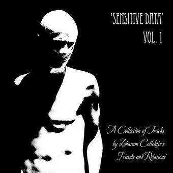 V/A Sensitive Data Vol. 1